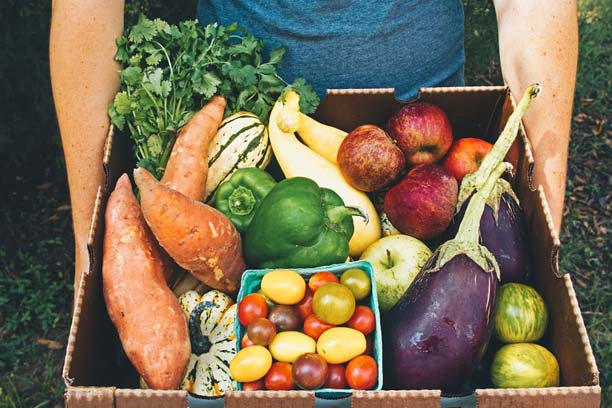 Growing Good Health
