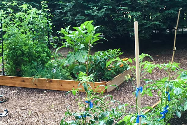 The VUMC Garden of Hope
