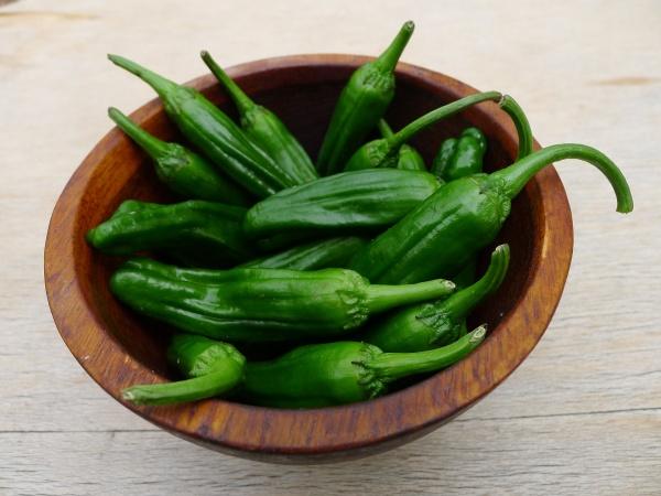 shishito-peppers_0.jpg