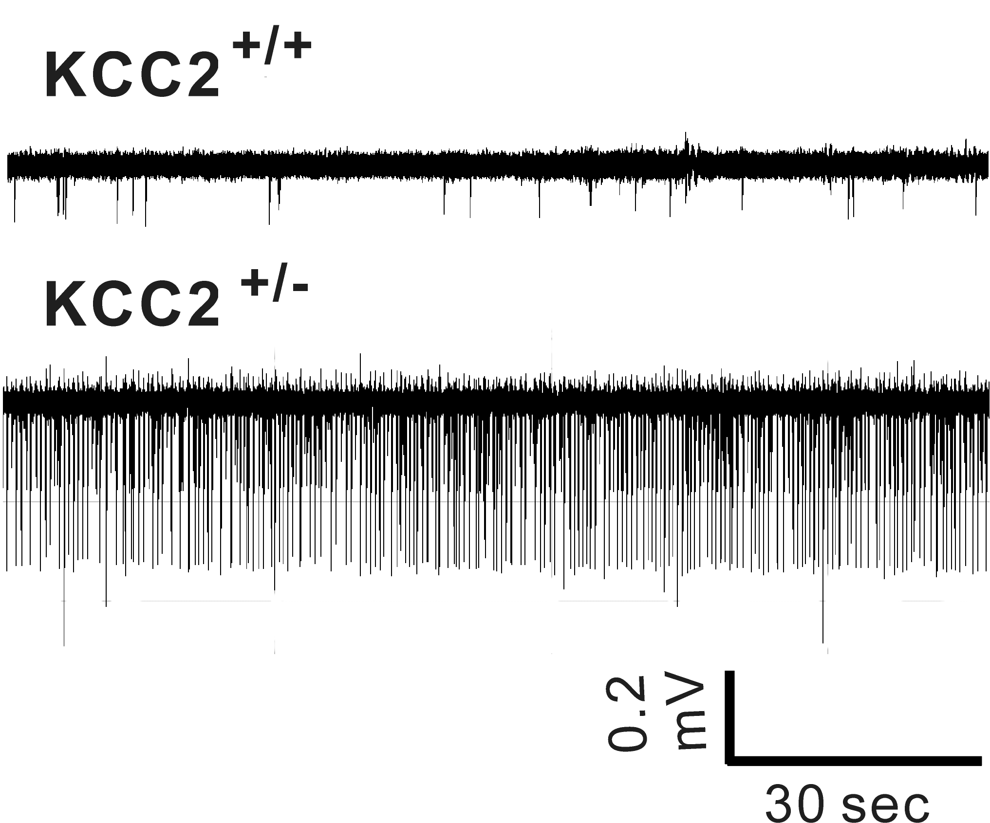 Figure 5 new_0.jpg
