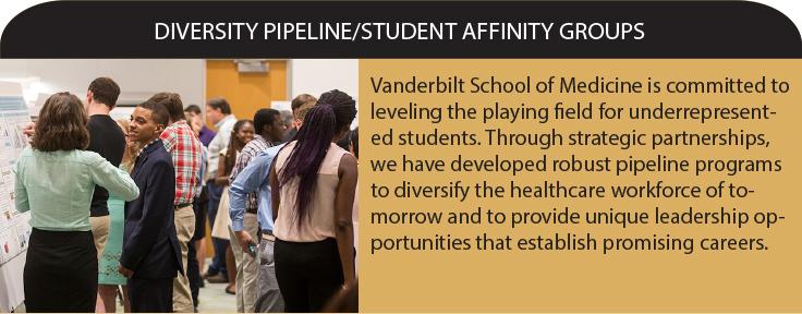 Diversity Student Bridge Programs