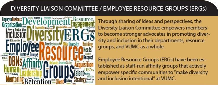 Diversity Liaison Committee