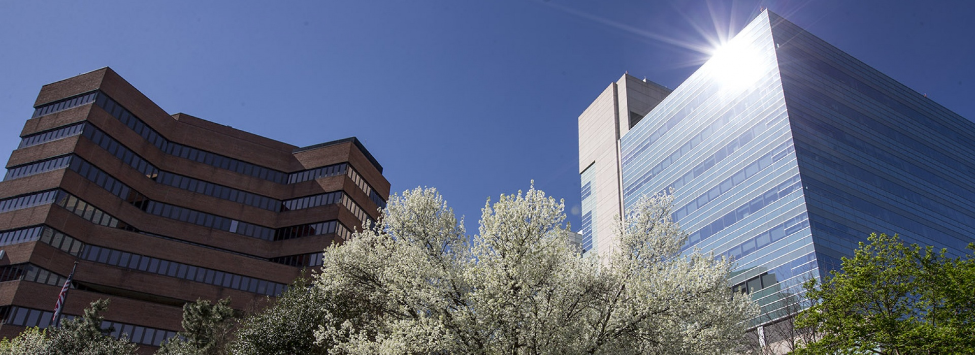 VUMC file photo in spring