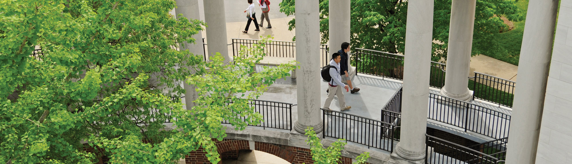 Campus Green Walkway