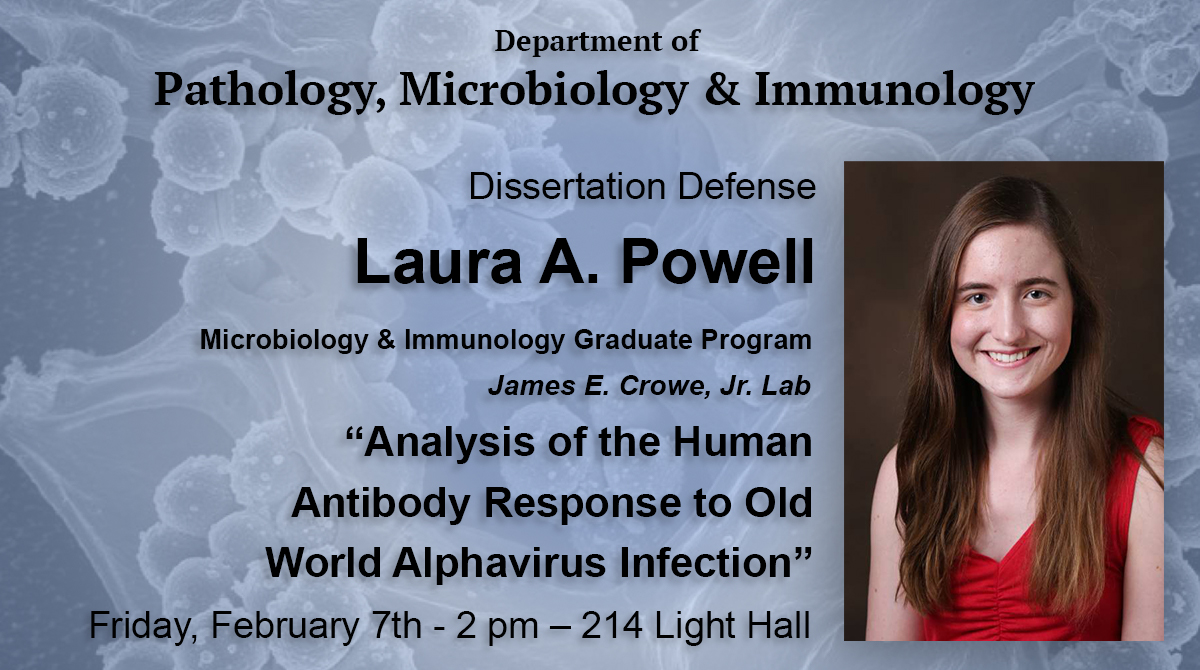 Dissertation Defense - Laura A. Powell - 2/7 at 2pm in 214 Light Hall