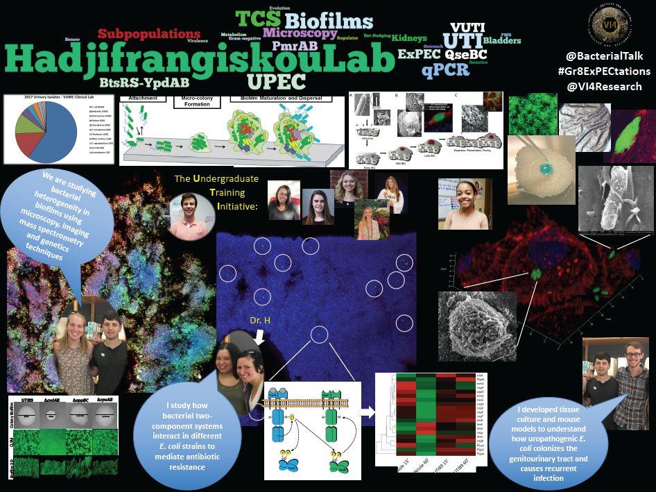 Hadjifrangiskou Lab Sheet