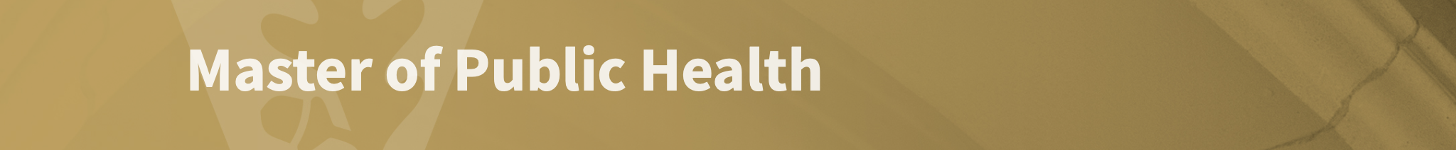 Masters of Public Health (MPH)