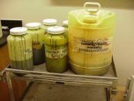 Improperly Stored Hazardous Waste - Example 1