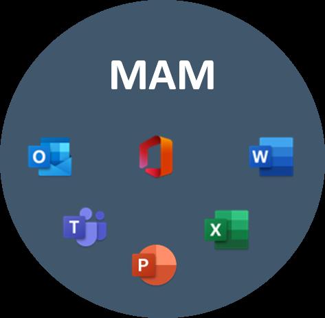 Microsoft Application Management