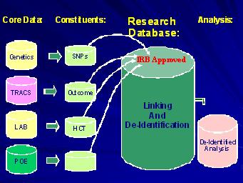 research1.jpg