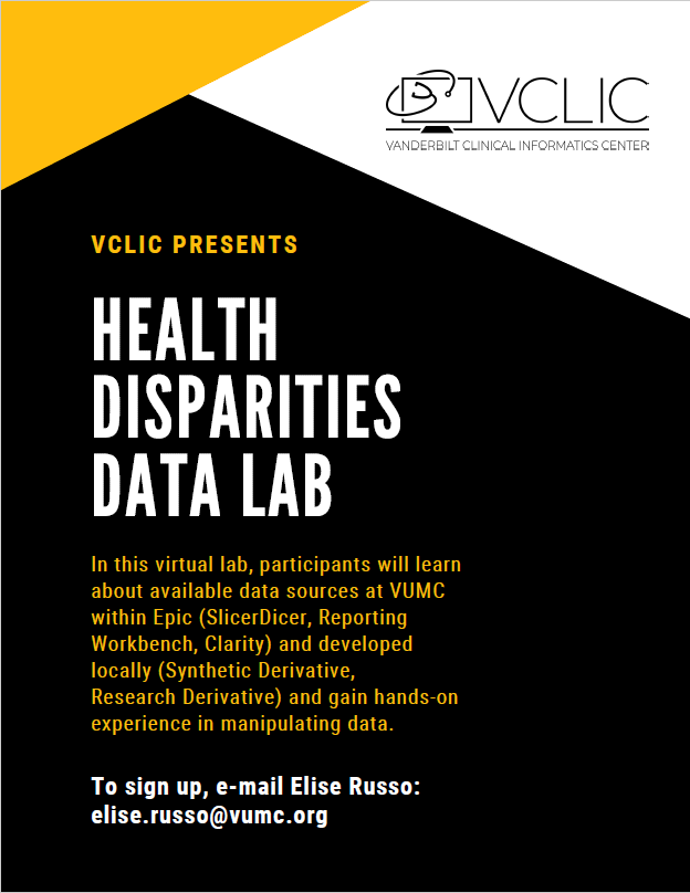 data disparities lab
