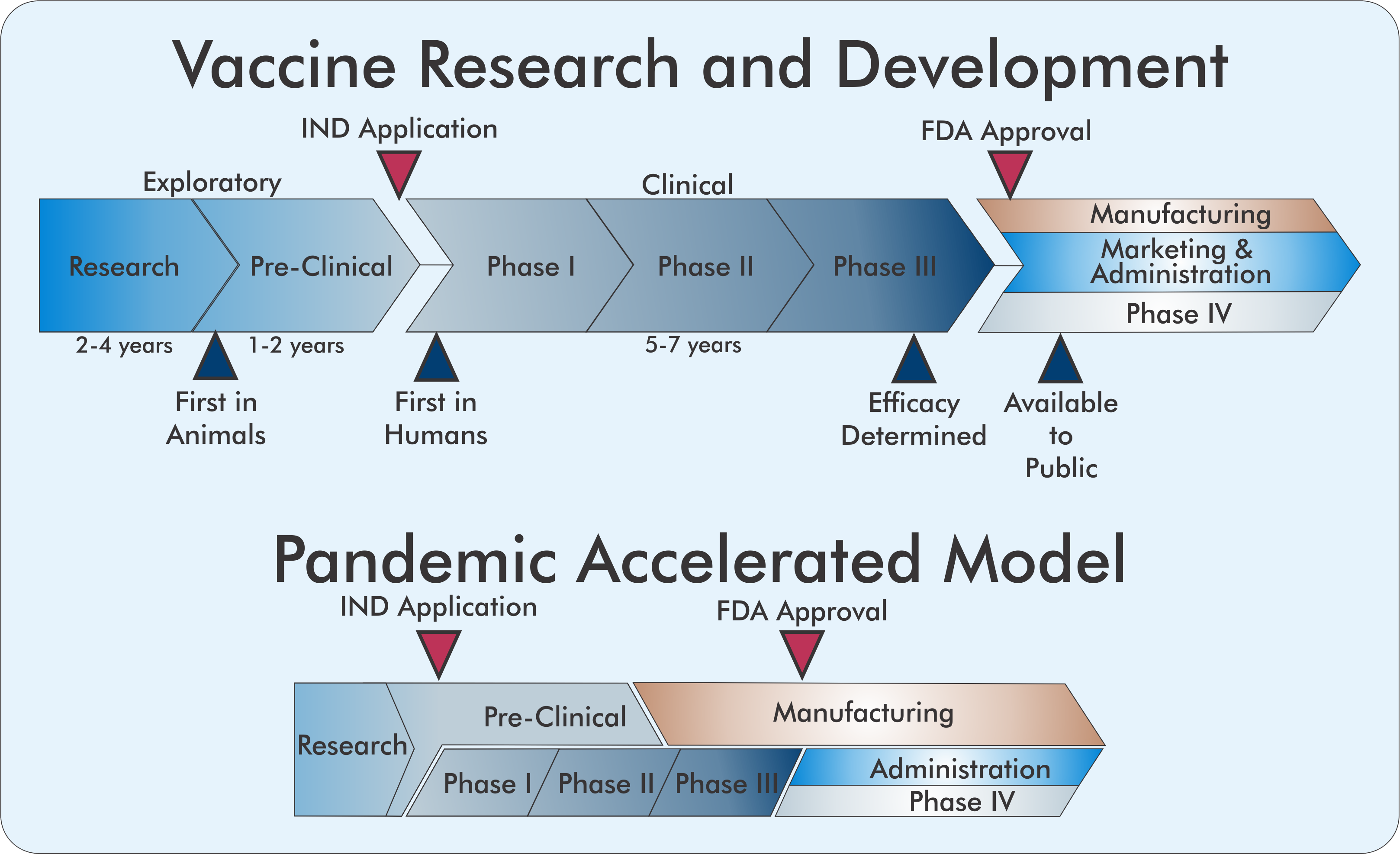 Developing a Vaccine at Pandemic Speed by Chris Hofmann