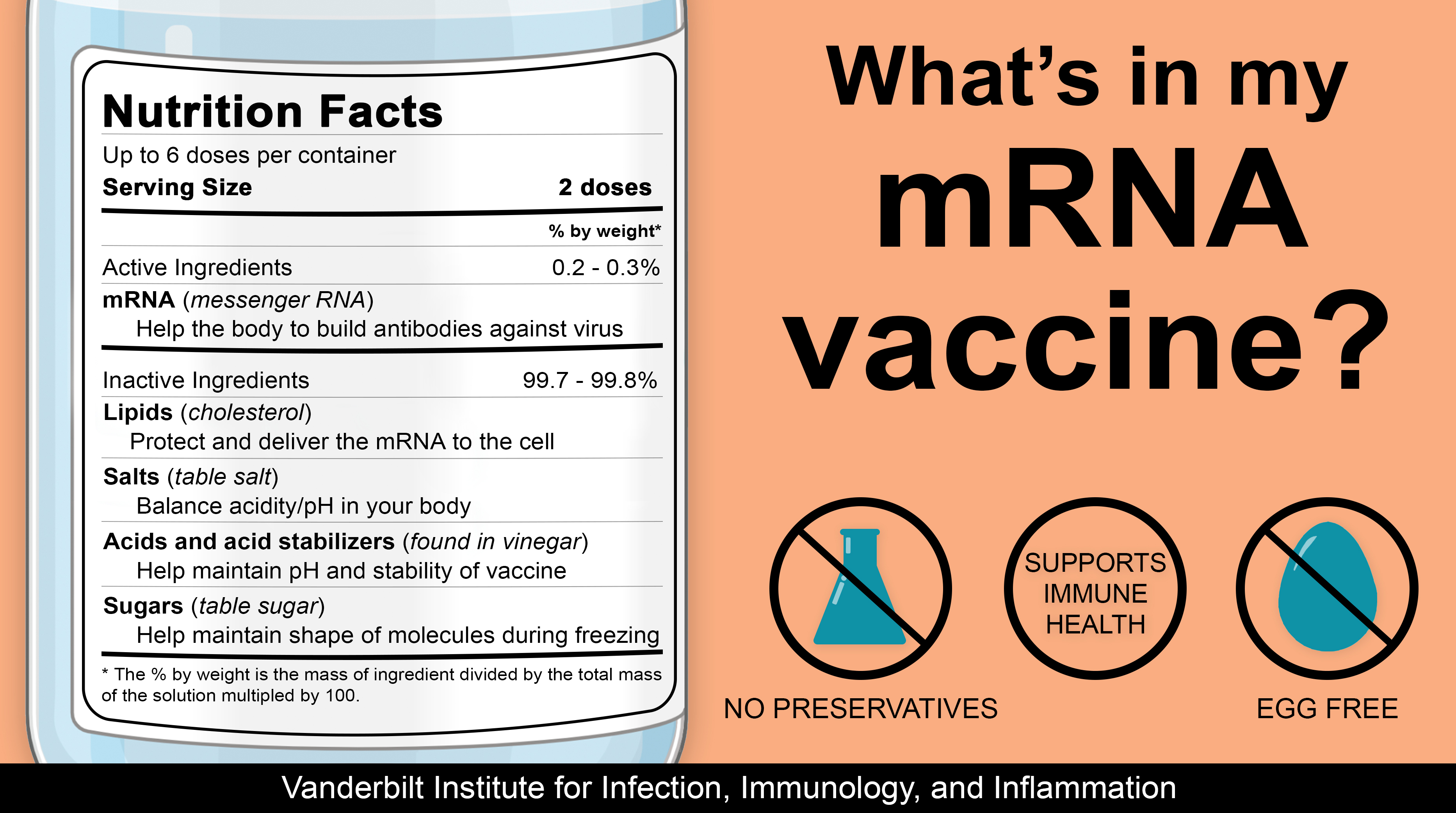 What's in my mRNA vaccine?