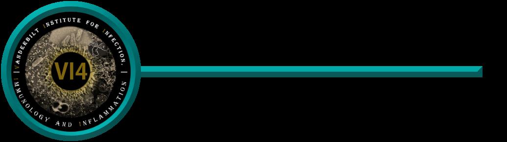VI4SemSeries Logo.png