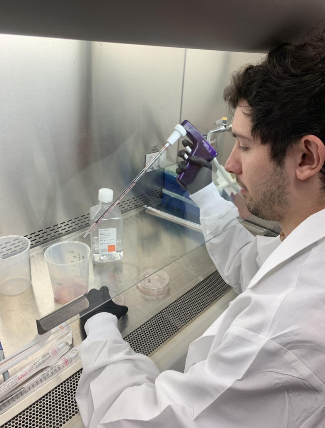 Chris Peek, Microbe-Host Interactions Medical Scientist Graduate Training Program